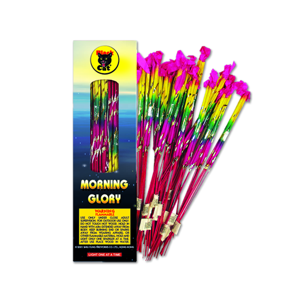 16 inch Morning Glory – 15-24-6